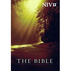 The Bible NIV, used book