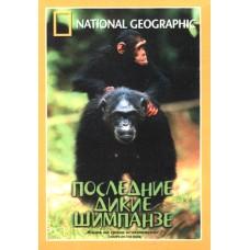 Последние дикие шимпанзе, DVD