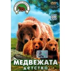Медвежата,  детство,  истории о зверятах